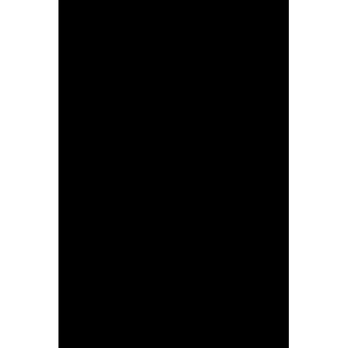 2-Нитротерефталевая кислота 1-метиловый эфир, 97%, Alfa Aesar, 25 г