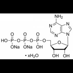 Гидрат динатриевой соли аденозин-5'-трифосфата степени II, 98,5% (ВЭЖХ), кристаллический, из микробной Sigma A3377