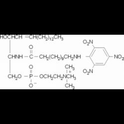 TNPAL-сфингомиелин 1 мкг / мл в смеси хлороформ / метанол (2: 1) Sigma T1014